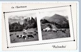 Chartreuse (Isère)   Les Alpages De Valombré        (CPSM, Bords Dentelés, Format 9 X 14) - Chartreuse