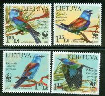 (WWF-422) W.W.F. Lithuania MNH Birds / Bird Stamps 2008 - Unused Stamps