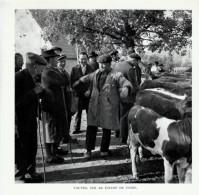 1955 - Héliogravure - Tauves (Puy-de-Dôme) - Sur Le Champs De Foire - FRANCO DE PORT - Vieux Papiers