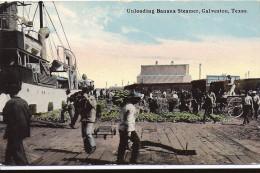 Cpa Usa, Galveston, Unloading Banana Steamer, Déchargement Des Bananes - Houston