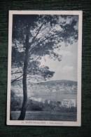 BANYULS SUR MER - Vue Artistique - Banyuls Sur Mer