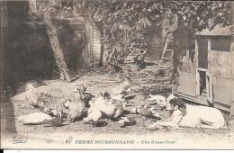 20 FERME BOURBONNAISE UNE BASSE COUR - Sin Clasificación