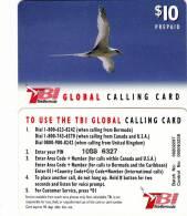 BERMUDA ISL. - Bird, TeleBermuda Prepaid Card $10(red Logo On Reverse), Used