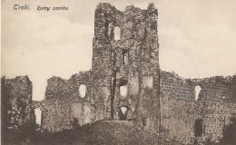 LITUANIE  -  TROKI  -  Ruiny Zamku - Litauen
