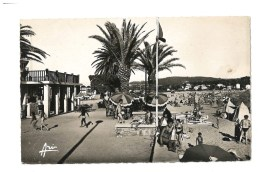 Toulon - Les Sablettes - La Plage - 375 - CPSM - Toulon