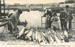 29 Concarneau, Pêche Au Thon, Débarquement Du Poisson Sur La Digue - Concarneau