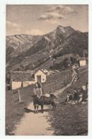 VIGEZZO - Alpe Arvogno Con La Pioda - 2 Scans - Andere Steden