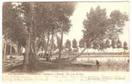 Lac  Overmeire  ---  Uytbergen  --- Berlaere   ---  Donck     ----    Un Coin Du Lac - Berlare