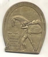 JOCKEY CLUB ROSARIO 25 ANIVERSARIO 1900-1925 MEDALLON DE BRONCE BRONZE TBE - Firma's