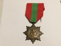- Médaille - La Patrie Reconnaissante - Ministère De La Santé - Très Bon état , BE, Sans. - Medallas Y Condecoraciones