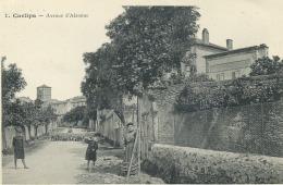 11 - Carlipa  ; Avenue D'Alzonne Et Avenue De Villespy . - France