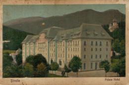 CARTE  POSTALA   SINAIA   PALACE  HOTEL     (NUOVA) - Romania
