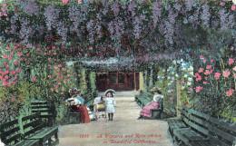 California - A Wistaria And Rose Arbor In Beautiful California - 2 SCANS - Oakland