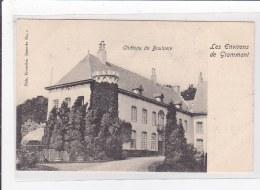 BELGIQUE : Chateau De Boulaere, Les Environs De Grammont - Très Bon état - Belgique