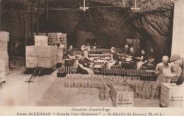 """49 - SAINT HILAIRE- SAINT FLORENT - Caves Ackerman """"Grans Vins Mousseux"""" Chantier D'emballage - France"""