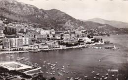 Monaco Monte Carlo Port Scene Real Photo - Harbor