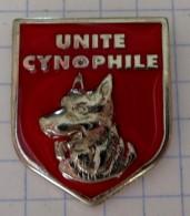 SAPEURS POMPIERS  UNITE CYNOPHILE  - CHIEN  BERGER ALLEMAND - Pompiers