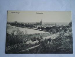 Gryfino - Greifenhagen (ehem. Pommern Deutschland) Panorama   // 19?? Verlag ? - Pommern