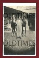 CARTAXO - PARELHA DE CAVALOS - 1940 REAL PHOTO PC - Santarem