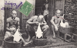 Saigon - Préparation Volaille - Vietnam