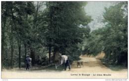 77 - LORREZ-LE-BOCAGE - Le Vieux Moulin - Animée, Cantonnier Au Travail - Couleur - Lorrez Le Bocage Preaux