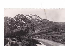 25769 Corse Col De Vergio -5344 La Cigogne - - France