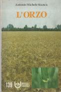 L'ORZO A.M. STANCA  UNIVERSALE ED AGRICOLE 1984 - Libri, Riviste, Fumetti
