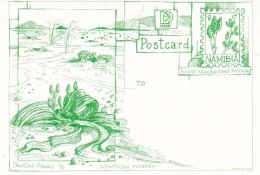 Cactus - Enveloppe - Carte - Document - Cactusses