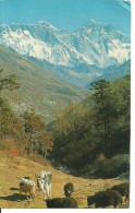 Himalaya (Nepal) From Left The Mountains: Nu-Tse, Everest, Lho-Tse - Thematic Stamp - Nepal