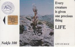 ERITREA - Plant & Rocks(TSE), Used