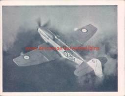 1953 Firefly AS Mk.6 - Luchtvaart