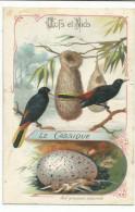CHROMOS OISEAUX - OEUFS ET NIDS - LE CASSIQUE - Trade Cards