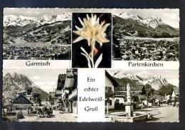 Postal De Garmisch Con Flor Edelweis Adherida. Nueva. - Sin Clasificación