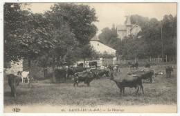 95 - SAINT-LEU - Le Pâturage - ELD 84 - Saint Leu La Foret