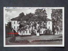ZWICKAU Sa. - Foto-AK - Regierungsgebäude - Non Classés