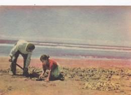 Argentina Extrayendo almejas en Mar de Ajo Digging For Clams