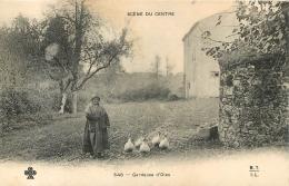 SCENE DU CENTRE GARDEUSES D´OIES - France