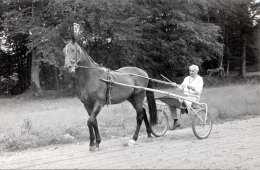 TRABRENNFAHRER Mit Seinem Rennpferd, Fotokarte - Unterhaltung