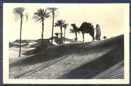 SIRIA , TARJETA POSTAL CIRCULADA ENTRE DAMASCO Y OVIEDO , Nº 1223 , SIRIA , DESIERTO. - Siria