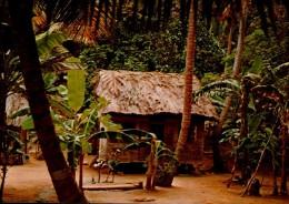 GUYANNE FRANCAISE..UN JOLI CARBET..CPM - Guyane