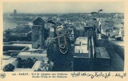 MAROC - RABAT - VOL DE CIGOGNES AUX OUDAYAS - Rabat