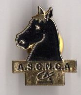 PIN´S CREDIT AGRICOLE ASCN CA CHEVAL - Banques