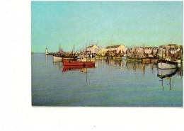 CP LE GUILVINEC Port De Pêche - Guilvinec
