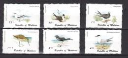 Maldive Islands Maldives 1980,6V,set,birds,vogels,vögel,oiseaux,pajaros,MNH/Postfris(A2492) - Unclassified