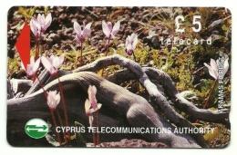 Cipro - Tessera Telefonica Da 5 Pouds T40 - Ciclamini, - Fiori