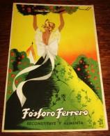 TARJETA POSTAL CIRCULADA FÓSFORO FERRERO. SERIE 2ª Nº 3. LEVANTE - Espagne