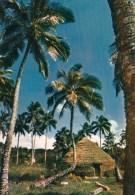1 AK Neukaledonien Nouvelle Caledonie * Haus Auf Der Loyalitätsinsel Lifou - Französisches Überseeterritorium Im Pazifik - Neukaledonien
