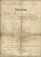 CROATIA, RADOVAN, VARAZDIN  --   NIZA PUCKA SKOLA  --  ODPUSTNICA, CERTIFICATE  - 1896 - Diplome Und Schulzeugnisse