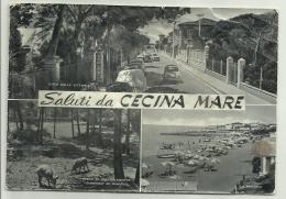 SALUTI DA CECINA MARE   VIAGGIATA FG MANCA F.BOLLO - Livorno
