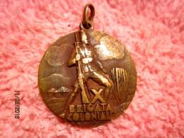 Medaglia X Brigata Coloniale - Italie